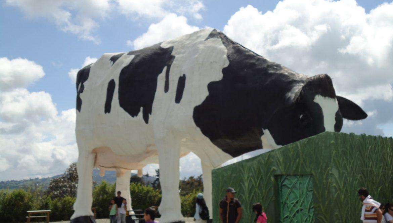 No era una vaca cualquiera